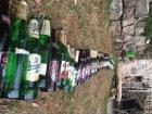 Pivní had